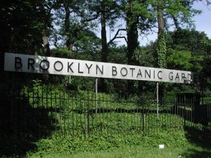 Brooklyn BG Sign