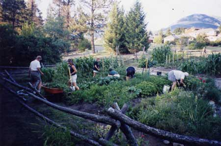 Columbia Valley - gardening
