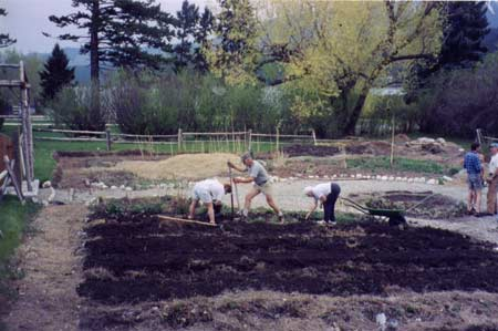 Columbia Valley - planting