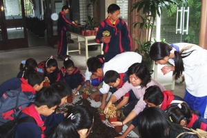 Shanghai Botanical Garden pot planting activity