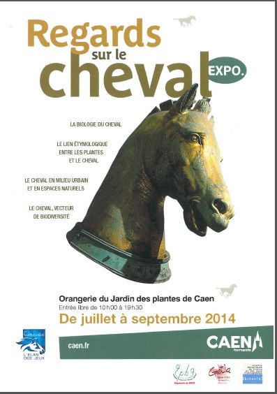 expo cheval