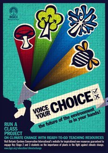 voice your choice poster