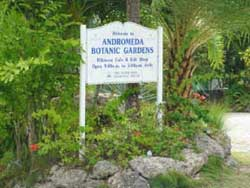 Welcome to Andromeda Botanic Gardens