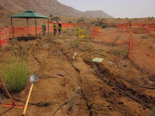 oman irrigation