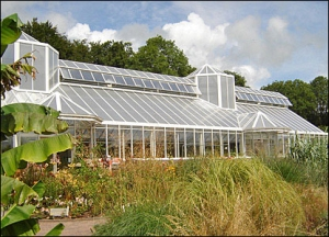 Tropical House at the National Botanic Garden, Wales