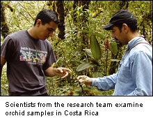 DNA Barcoding: scientists examine rare species