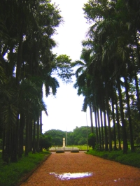 Indian Botanic Gardens -Image Licensed under creative commons Jeroje