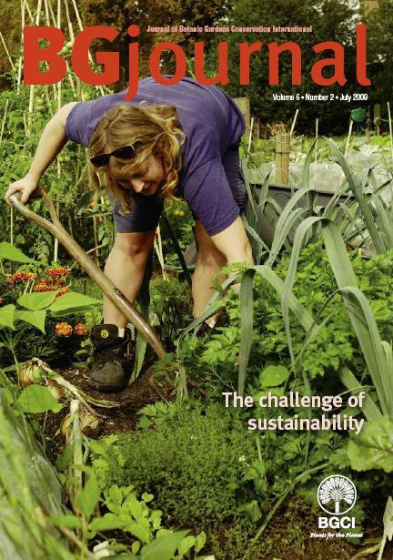 bg journal 6.2 cover