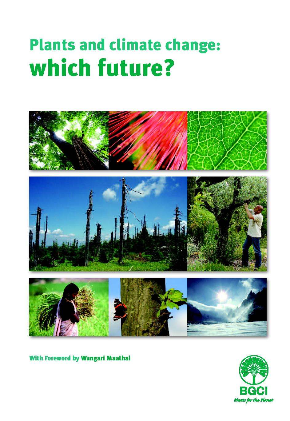 which future report cover