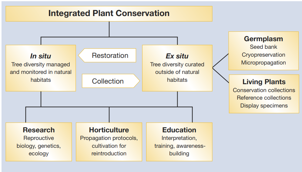 Integrated Plant Conservation | Botanic Gardens Conservation