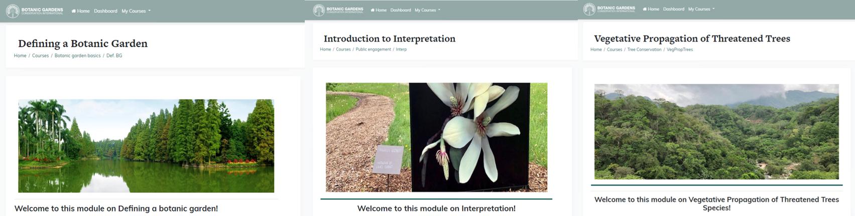 Moodle courses images